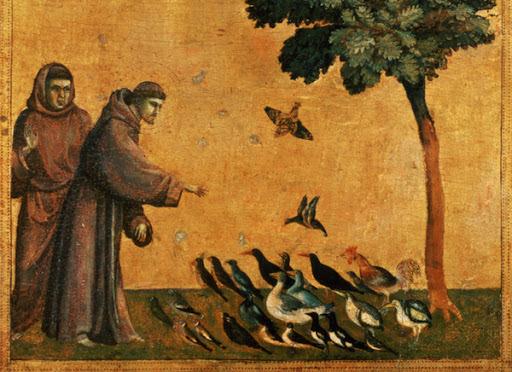 Appello al Papa per il diritto di tenere animali in casa